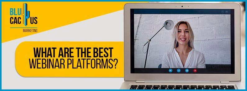 BluCactus - webinar platforms - banners