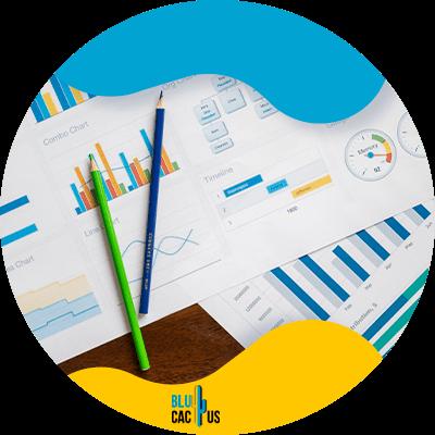 Blucactus-2-Determine-your-metrics