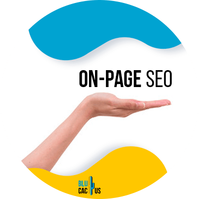 Blucactus-3-On-page-SEO
