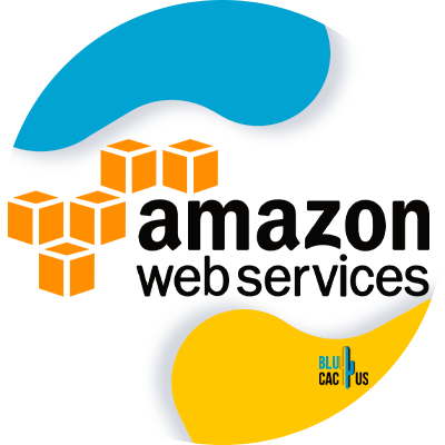 Blucactus-8-Amazon-AWS - Best and Cheap Cloud Web Hosting Plans In 2021
