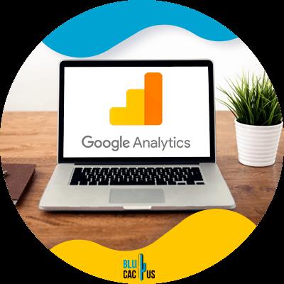 Blucactus-9-Traffic - seo metrics
