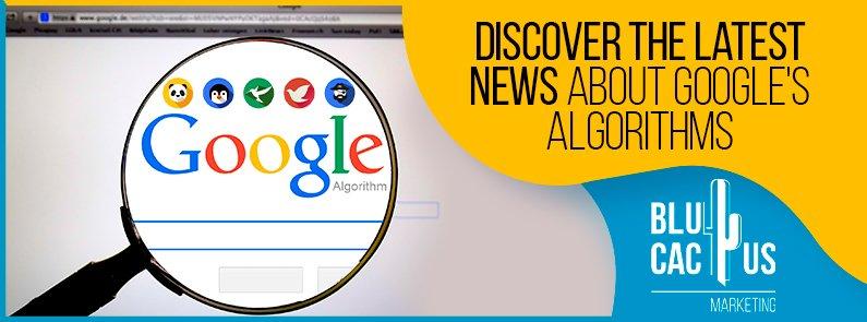 BluCactus - news about Google's algorithms