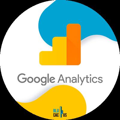 Blucactus-Google-Analytics