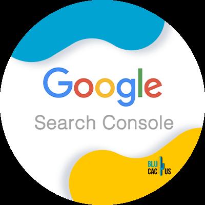 Blucactus-Search-console