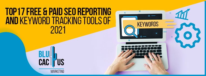 Blucactus - Top 17 Free & Paid SEO reporting and keyword tracking Tools of 2021