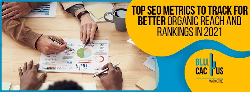 Blucactus - Top SEO Metrics To Track For Better Organic Reach And Rankings In 2021