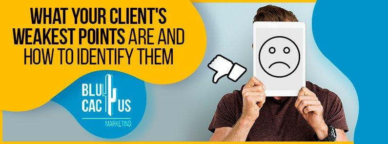 BluCactus - client's weakest points - banner