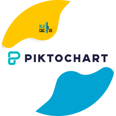 Blucactus-4-PiktoChart