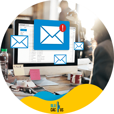 Blucactus-6-Include-relevant-links - Best Email Marketing Tips That Nobody Will Tell You Ever