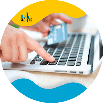 Blucactus-6-Practical-payment-method - How to Confirm Your Website Is a Success