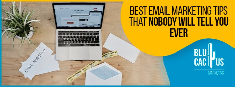 Blucactus - Best Email Marketing Tips That Nobody Will Tell You Ever