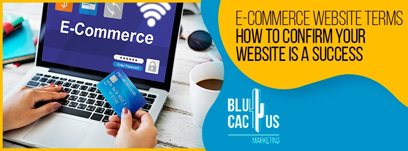 Blucactus-Ecommerce-Website-Terms-cover-page