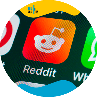 BluCactus - What is Reddit and what is this platform about?