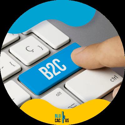 Blucactus-What-is-a-B2C-Model