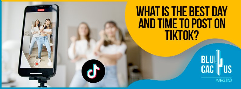 BluCactus - What is the best day and time to post on TikTok?