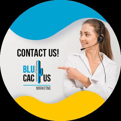 BluCactus - CDN