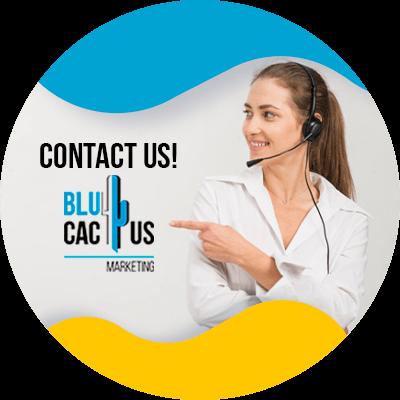 BluCactus - data security