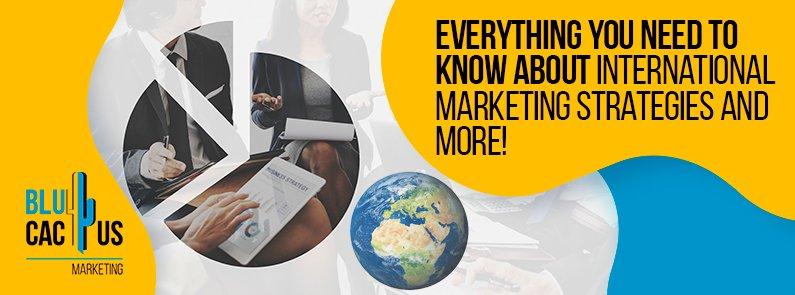 BluCactus - international marketing strategies