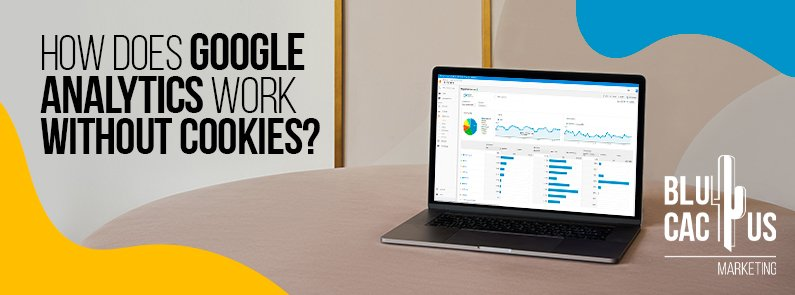 Blucactus-How-Does-Google-Analytics-Work-Without-Cookies-cover-page