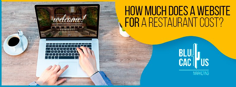 BluCactus - How much does a website for a restaurant cost?