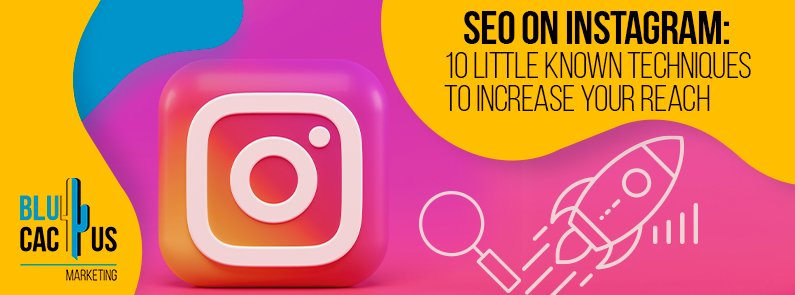 BluCactus - SEO on Instagram: 10 Little Known Techniques to Increase Your Reach