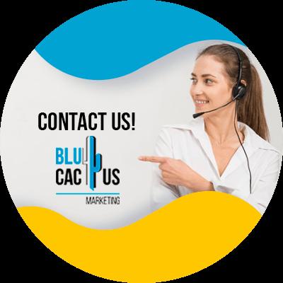 Blucactus-contact-us